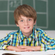 Smiling young schoolboy in classroom — Stock Photo #51323251