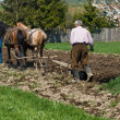 Two men plowing — Stock Photo #26779415