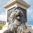 A lion on Trafalgar square. — Stock Photo