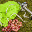 Fitness composition — Stock Photo #25800989