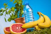 Thème de remise en forme avec des fruits et légumes — Photo