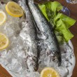 Raw fish, mediterranean composition — Stock Photo