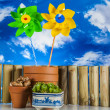 Gardening stuff with blue sky background — Stock Photo