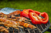 Barbecue saturated composition — Stock Photo