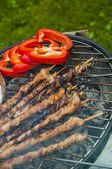 Spring grilling theme, vivid colors — Stock Photo