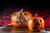 Halloween theme of pumpkins — Stock Photo