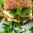 Natural theme od sandwich — Stock Photo