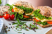 Saturated theme of sandwich — Stockfoto