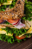 Saturated theme of light lunch with sandwich — Stok fotoğraf