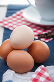 Bright concept of breakfast with egg — Stock Photo