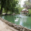 Maria Luisa Park in Seville, Spain — ストック写真