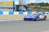 International gt open - día 1 — Foto de Stock