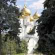Uspensky Cathedral Yaroslavl Russia — Stock Photo #29592595