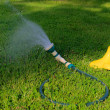 Watering — Stock Photo #47951571