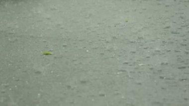 Kroupy liják s massive srážek krupobití. — Stock video