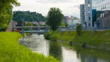 Río grande con árboles y polen en todas partes — Vídeo de stock
