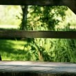 Woman with black pants walking with a dog over a wooden bridge with small river under it. Green background on a sunny day. — Stock Video