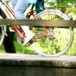 Woman cycling over a wooden bridge with small river under it, another woman with blue pants coming across. Green background on a sunny day. — Stock Video