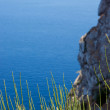 Stock Photo: Grass on background of blue sea, sky and rock