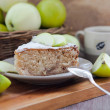 Piece of homemade apple pie with cinnamon — Stok Fotoğraf #30456441