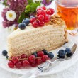 Piece of homemade honey cake decorated with fresh berries — Foto de Stock