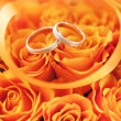 Gold wedding rings on the orange roses — Zdjęcie stockowe