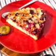 Piece of homemade plum pie — Stock Photo