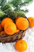Fresh tangerine in a basket — Stockfoto