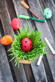 Colorful painted Easter egg on a fresh green grass — Stock Photo