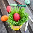 Colorful painted Easter egg on a fresh green grass — Stock Photo #42908871