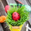 Colorful painted Easter egg on a fresh green grass — Stock Photo #43678241