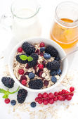 Healthy breakfast with granola and fresh berries — 图库照片