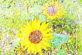Color floral artbrushed background — Stock Photo