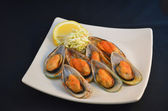 Mussels on the Half Shell — Stock Photo