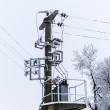 Old concrete power-line with transformer and winter-tree — 图库照片