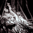 Royalty-Free Stock Photo: Campfire in the night, black and white