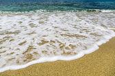 在夏天海边的细节 — 图库照片