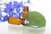 Two bottles with homeopathy globules, green leaf and flowers — Stock Photo