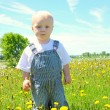 Baby in Dandelion Field — Stock Photo