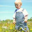 Baby boy standing in dandelions — Stock Photo