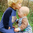 Child Kissing Baby Brother — Stock Photo