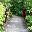 Bridge on Wooded Trail — Stock Photo
