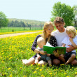 Happy Family Reading Book Outside in Meadow — Stock Photo #31656353