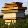 Old Books Stacked in Grass — Stock Photo