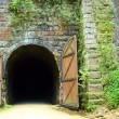 Old Rail Bike Tunnel — Stock Photo