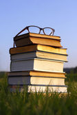 Glasses on Stack of Books Outside — Stock Photo