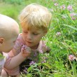 Stock Photo: Children Looking at Wildflowers
