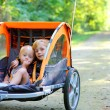 Two Boys in Bike Trailer Outside — Stock Photo
