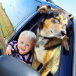 Happy Baby and Dog in Minivan Window — Stock Photo