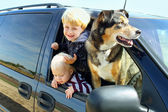 Children and Dog in Minivan — Stock Photo